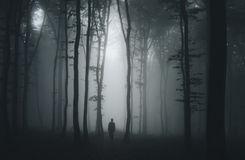 silhouet-van-de-mens-donker-achtervolgd-eng-bos-op-halloween-nacht-58745170